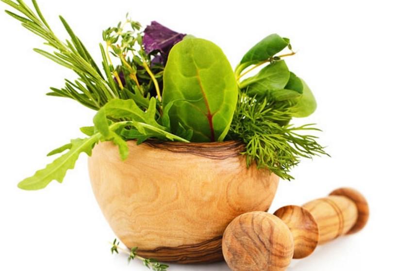 Cómo preservar hierbas medicinales correctamente