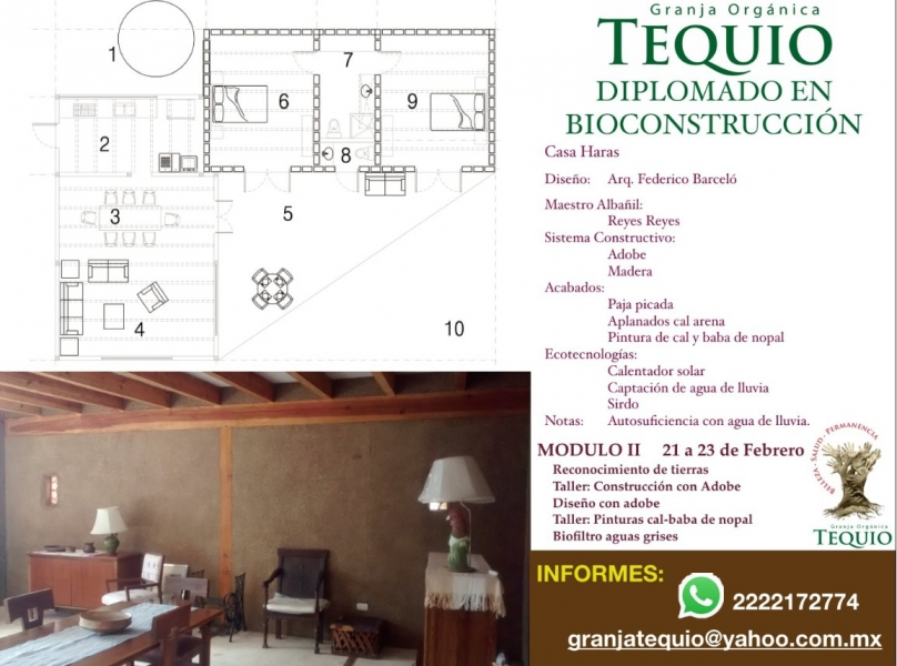 gt-bioconstruccion_adobe