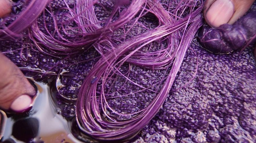 Taller de Extracción De Tintes, Pigmentos y Colorantes Orgánicos a ...